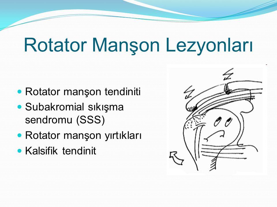 Rotator Manşon Lezyonları Rotator manşon tendiniti Subakromial sıkışma sendromu (SSS) Rotator manşon yırtıkları Kalsifik tendinit