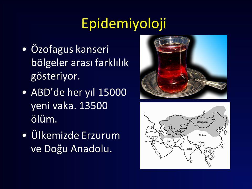 Epidemiyoloji Özofagus kanseri bölgeler arası farklılık gösteriyor. ABD'de her yıl 15000 yeni vaka. 13500 ölüm. Ülkemizde Erzurum ve Doğu Anadolu.