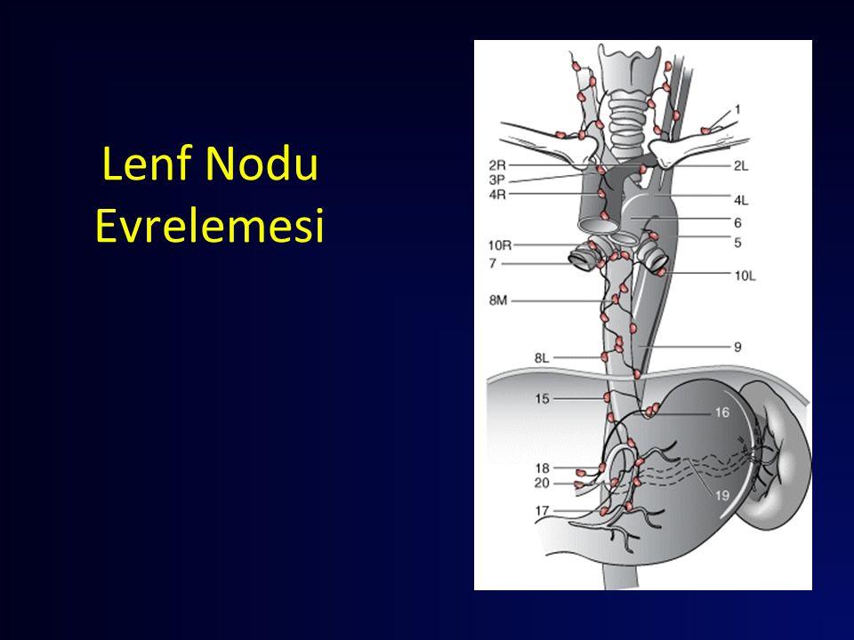 Lerut 2005 Ann Surg 2004.Adeno and Skuamoz 3-alan lenfadenektomi.