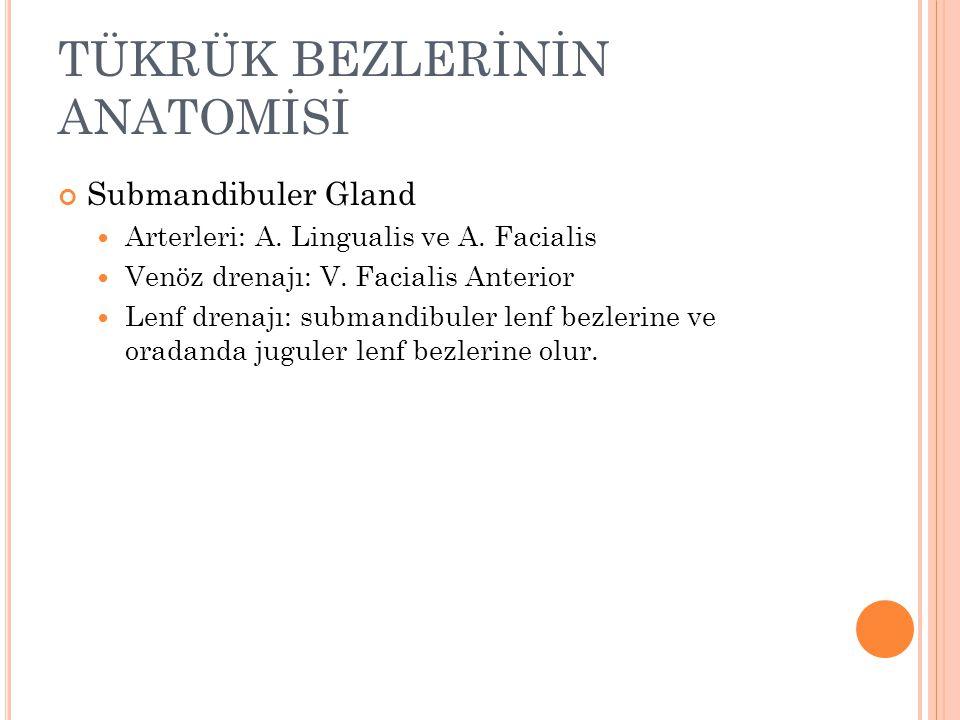 TÜKRÜK BEZLERİNİN ANATOMİSİ Submandibuler Gland Arterleri: A.