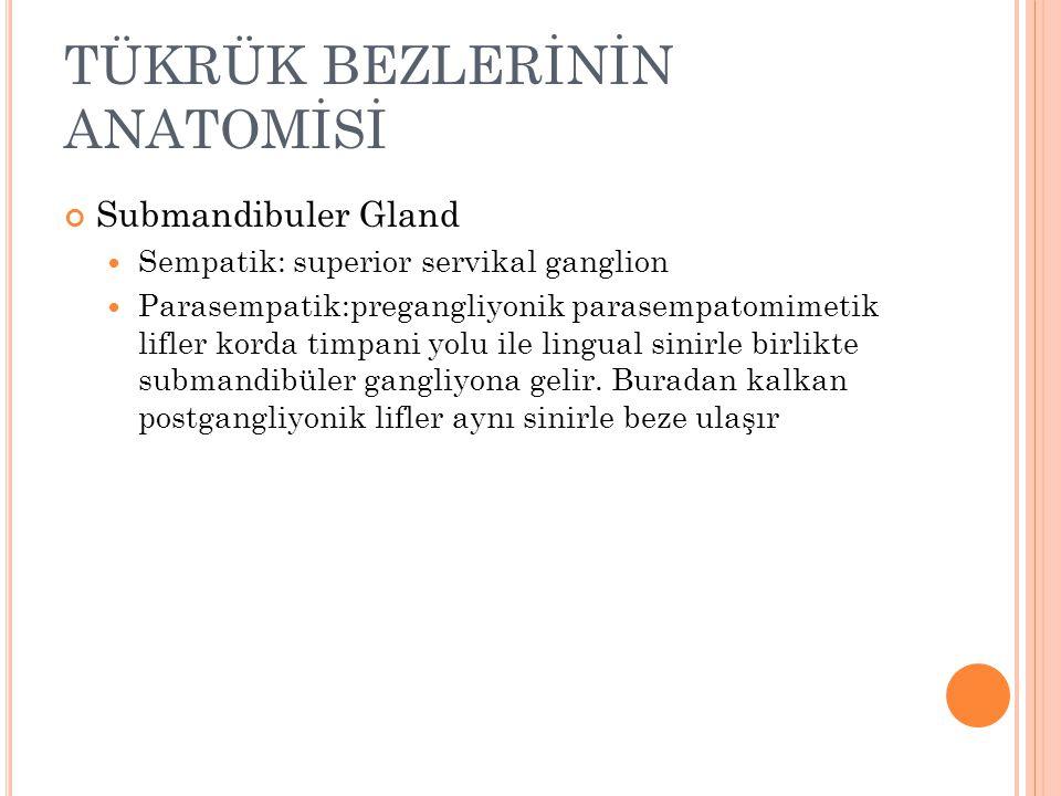 Submandibuler Gland Sempatik: superior servikal ganglion Parasempatik:pregangliyonik parasempatomimetik lifler korda timpani yolu ile lingual sinirle birlikte submandibüler gangliyona gelir.