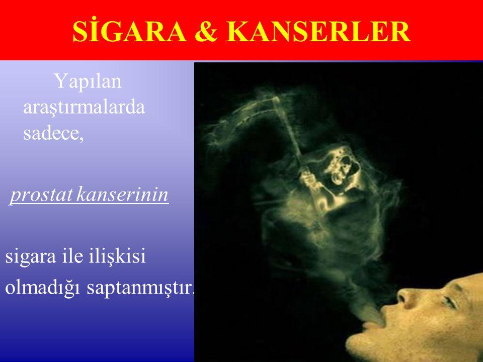 Yapılan araştırmalarda sadece, prostat kanserinin sigara ile ilişkisi olmadığı saptanmıştır. SİGARA & KANSERLER