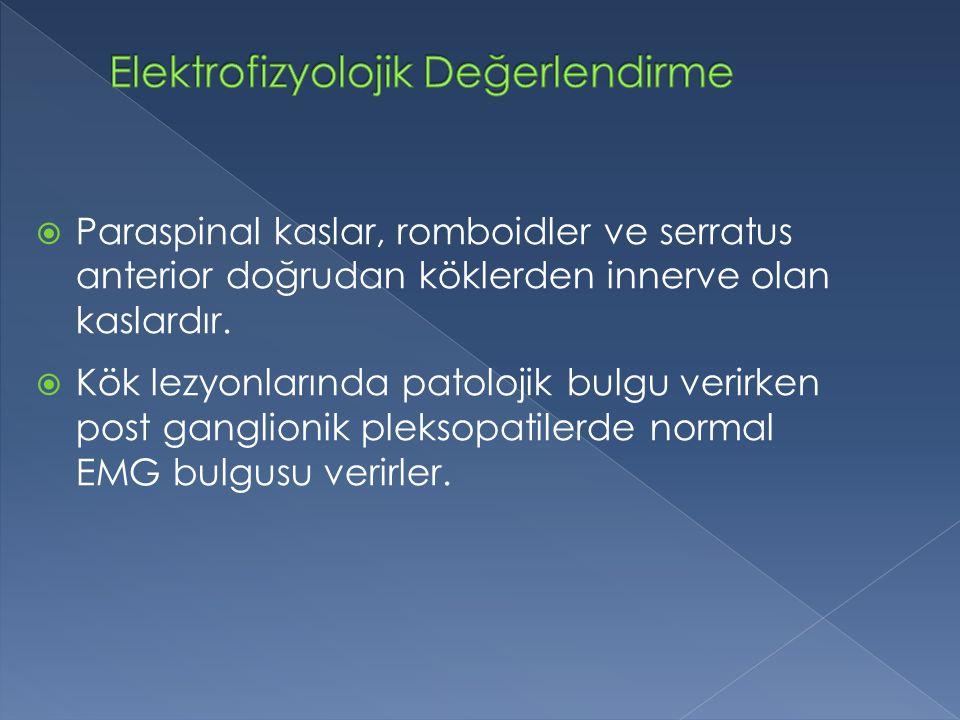  Paraspinal kaslar, romboidler ve serratus anterior doğrudan köklerden innerve olan kaslardır.