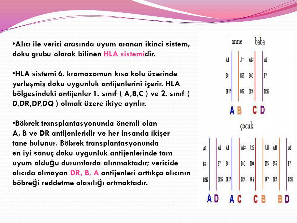 Alıcı ile verici arasında uyum aranan ikinci sistem, doku grubu olarak bilinen HLA sistemidir. HLA sistemi 6. kromozomun kısa kolu üzerinde yerleşmiş