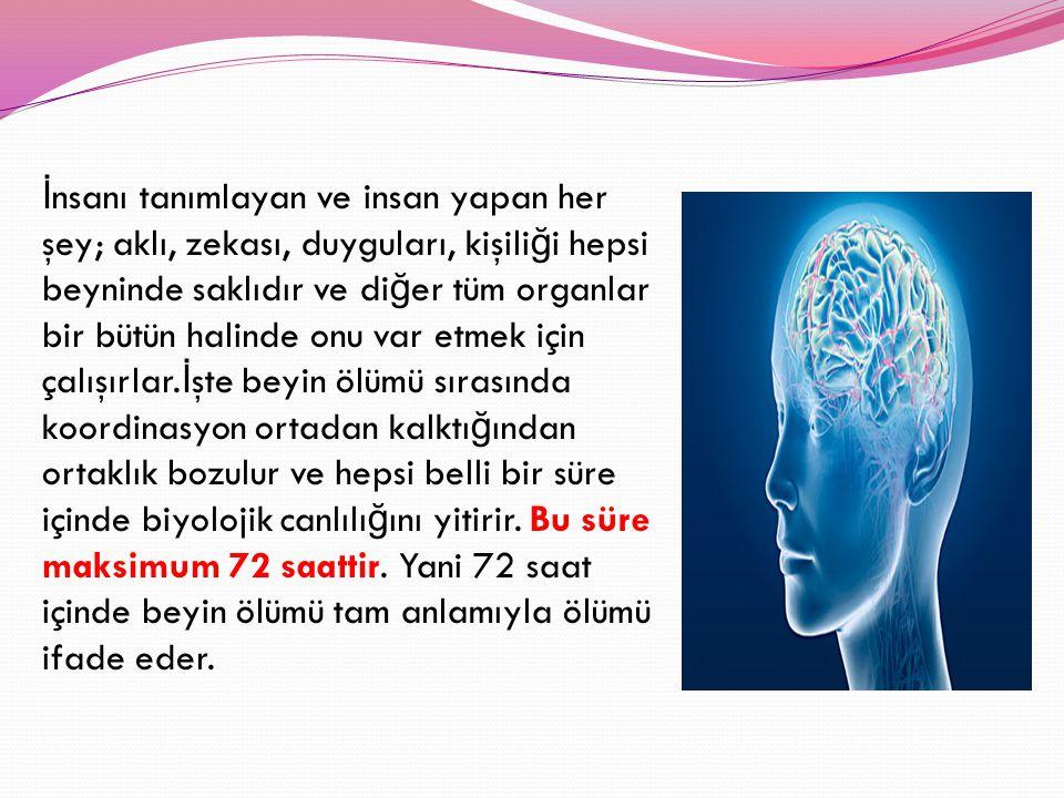 İ nsanı tanımlayan ve insan yapan her şey; aklı, zekası, duyguları, kişili ğ i hepsi beyninde saklıdır ve di ğ er tüm organlar bir bütün halinde onu v