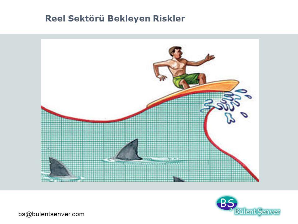 bs@bulentsenver.com Reel Sektörü Bekleyen Riskler