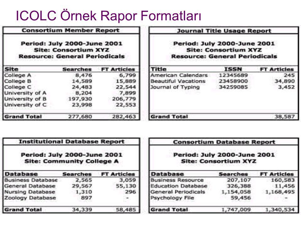 ICOLC Örnek Rapor Formatları