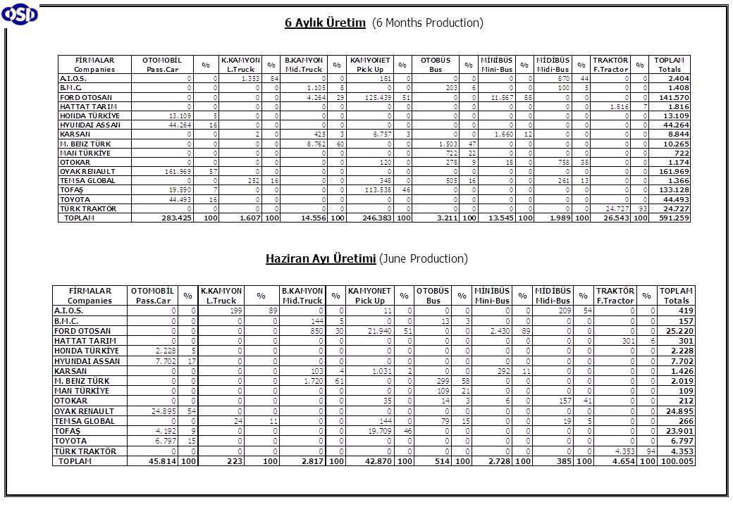 6 Aylık Üretim (6 Months Production) Haziran Ayı Üretimi (June Production)
