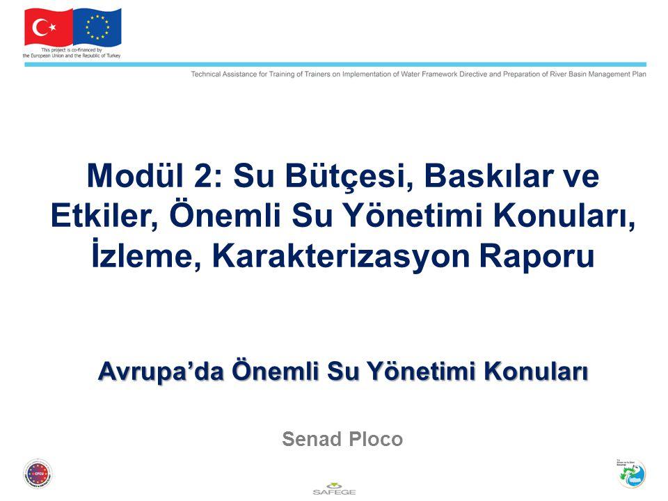 Avrupa'da Önemli Su Yönetimi Konuları Modül 2: Su Bütçesi, Baskılar ve Etkiler, Önemli Su Yönetimi Konuları, İzleme, Karakterizasyon Raporu Avrupa'da
