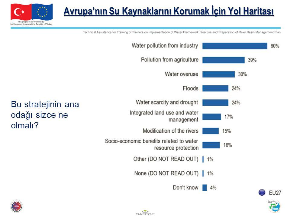 Avrupa'nın Su Kaynaklarını Korumak İçin Yol Haritası Bu stratejinin ana odağı sizce ne olmalı?