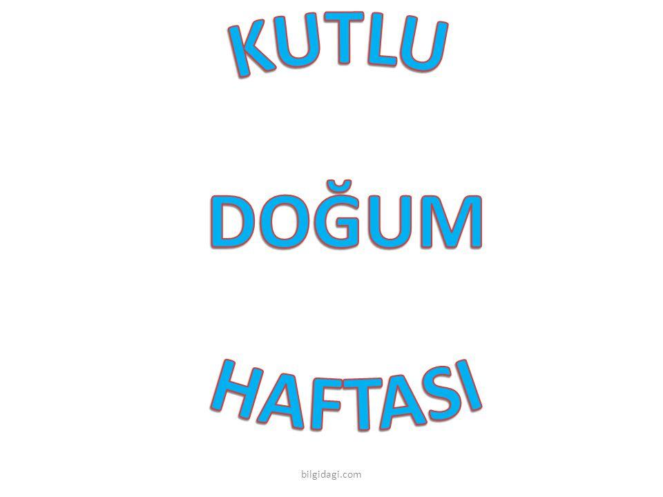 bilgidagi.com