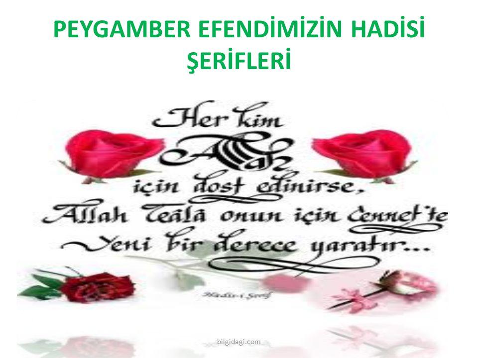 PEYGAMBER EFENDİMİZİN HADİSİ ŞERİFLERİ bilgidagi.com