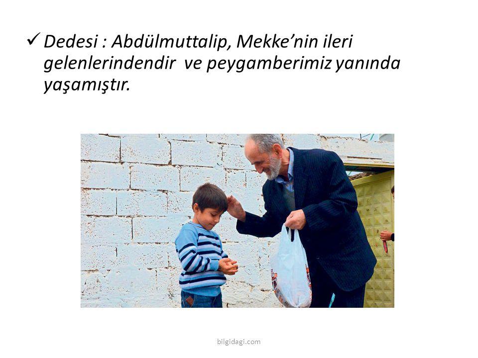 Dedesi : Abdülmuttalip, Mekke'nin ileri gelenlerindendir ve peygamberimiz yanında yaşamıştır. bilgidagi.com