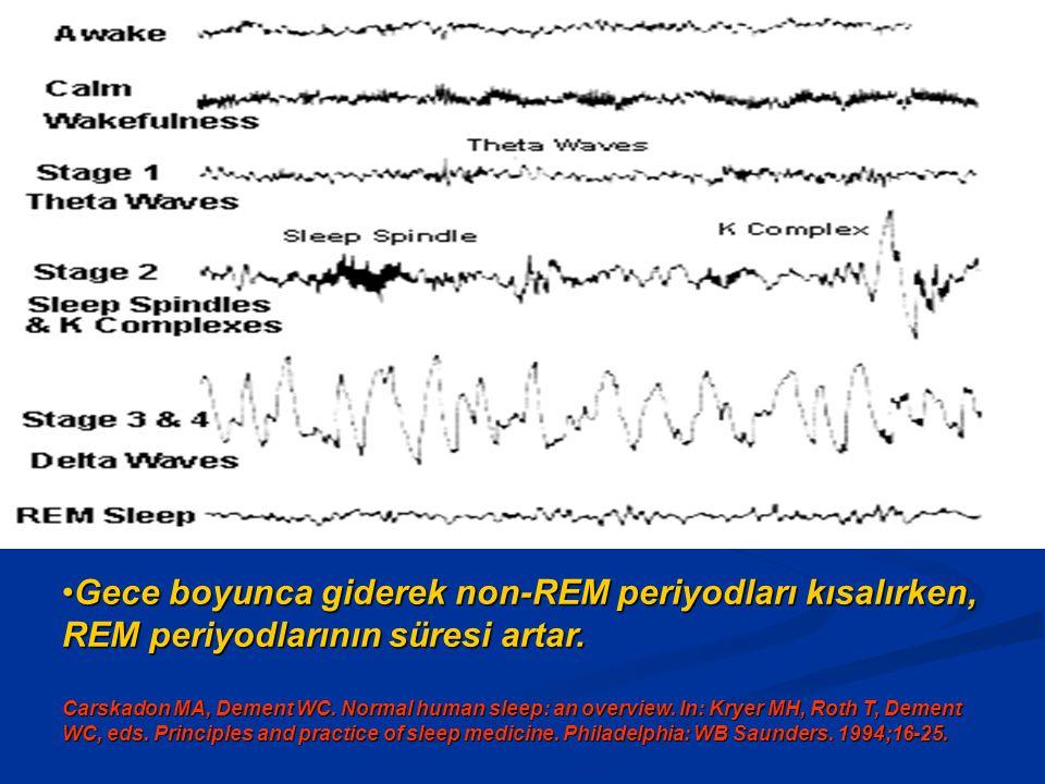 Gece boyunca giderek non-REM periyodları kısalırken, REM periyodlarının süresi artar.Gece boyunca giderek non-REM periyodları kısalırken, REM periyodlarının süresi artar.