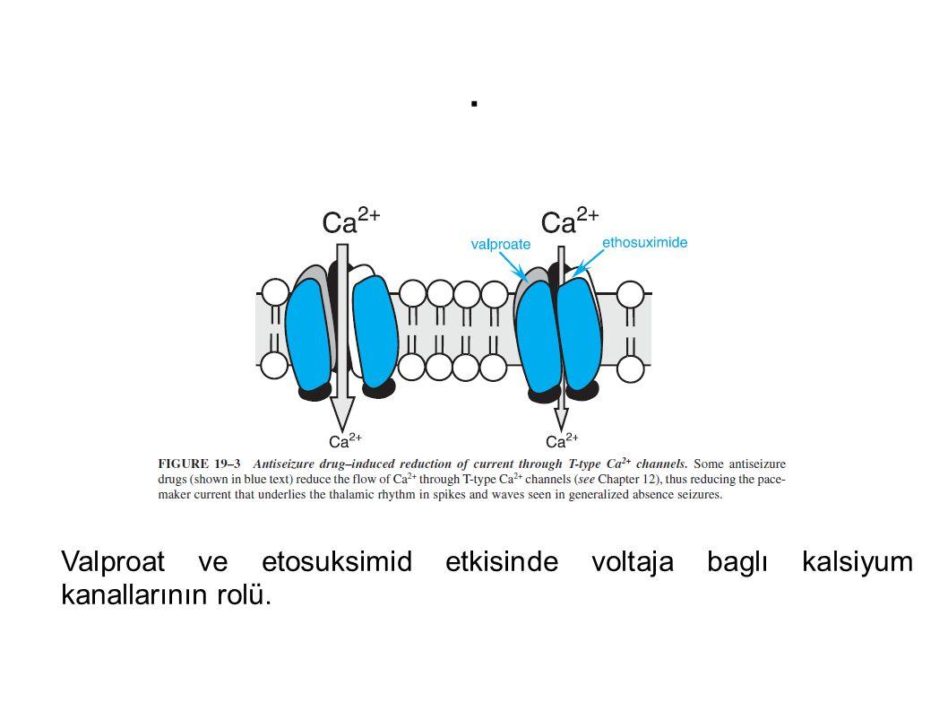 . Valproat ve etosuksimid etkisinde voltaja baglı kalsiyum kanallarının rolü.