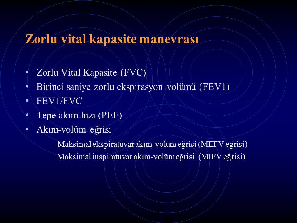 Zorlu vital kapasite manevrası Zorlu Vital Kapasite (FVC) Birinci saniye zorlu ekspirasyon volümü (FEV1) FEV1/FVC Tepe akım hızı (PEF) Akım-volüm eğrisi Maksimal ekspiratuvar akım-volüm eğrisi (MEFV eğrisi) Maksimal inspiratuvar akım-volüm eğrisi (MIFV eğrisi)