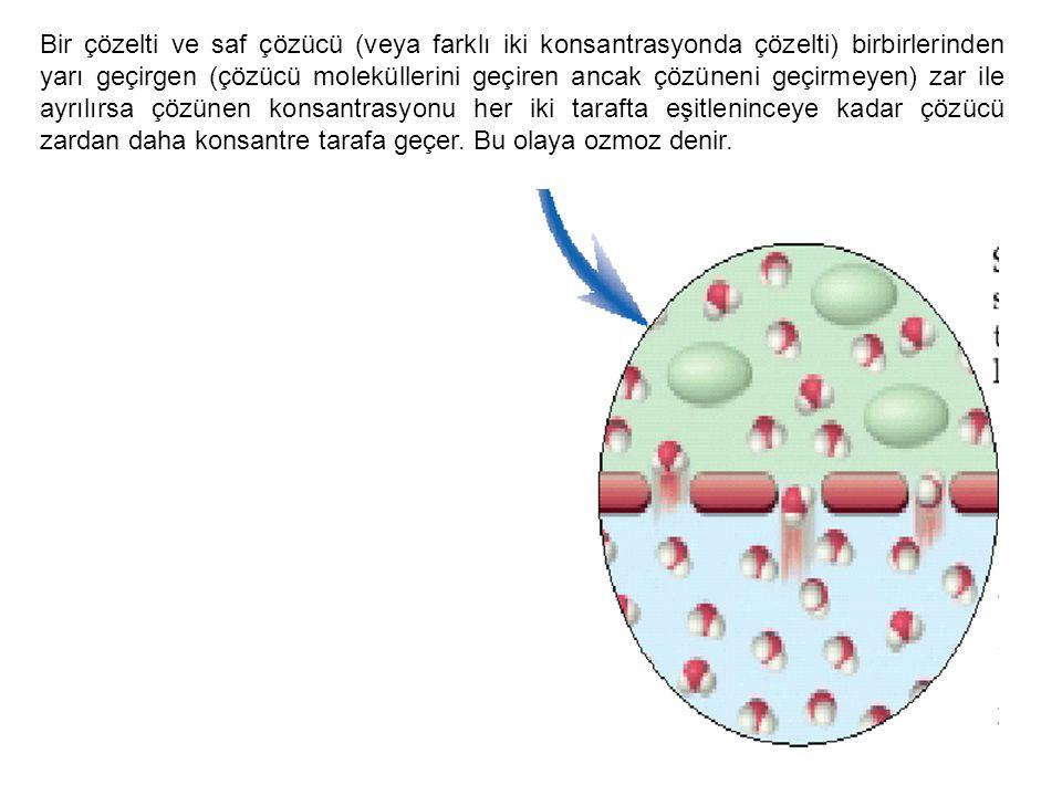 Bir çözelti ve saf çözücü (veya farklı iki konsantrasyonda çözelti) birbirlerinden yarı geçirgen (çözücü moleküllerini geçiren ancak çözüneni geçirmey