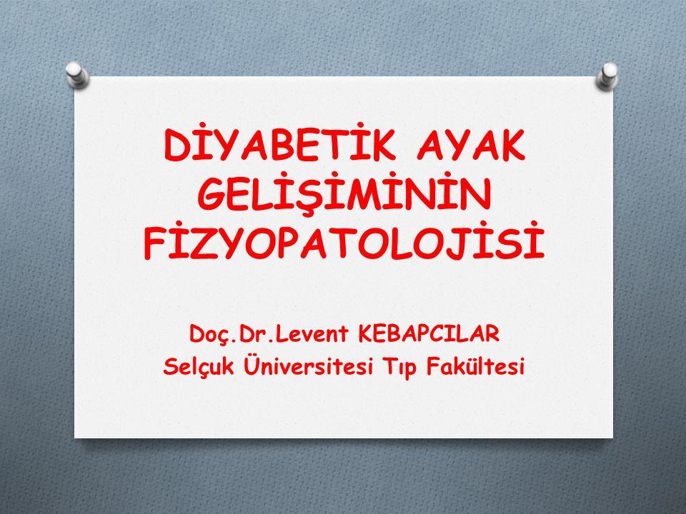 DİYABETİK AYAK GELİŞİMİNİN FİZYOPATOLOJİSİ Doç.Dr.Levent KEBAPCILAR Selçuk Üniversitesi Tıp Fakültesi