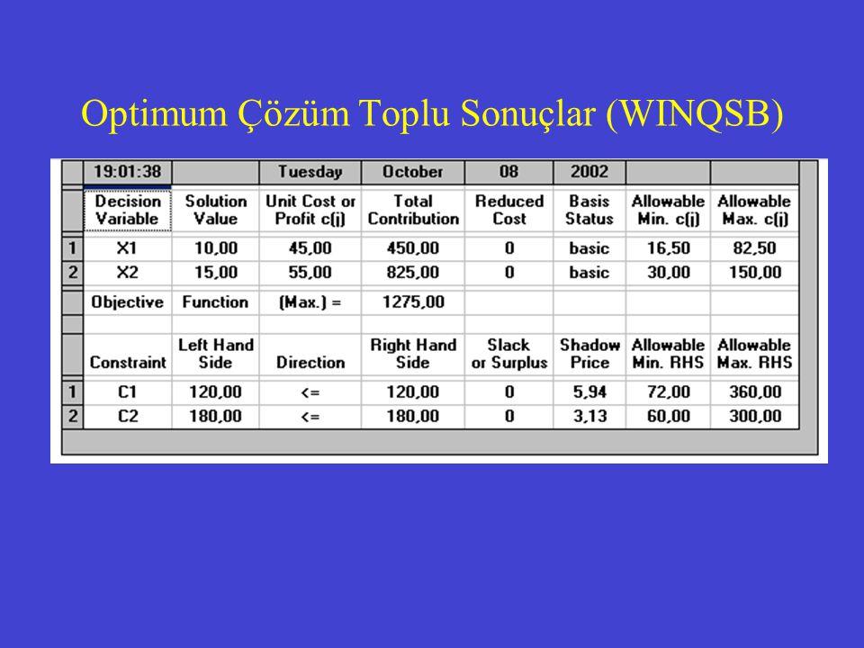 Optimum Çözüm Toplu Sonuçlar (WINQSB)