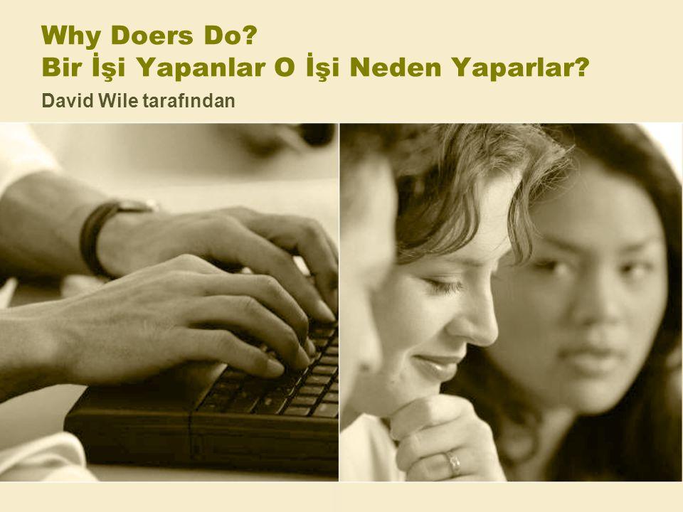 Why Doers Do Bir İşi Yapanlar O İşi Neden Yaparlar David Wile tarafından