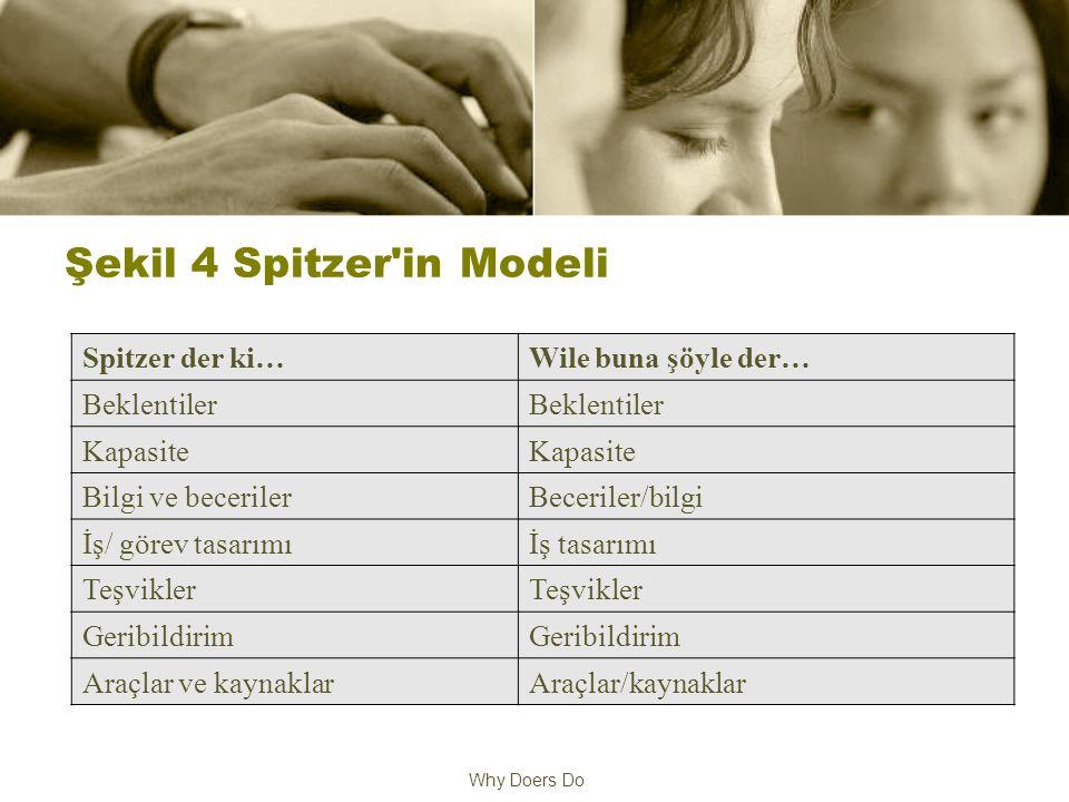 Why Doers Do Şekil 4 Spitzer in Modeli Spitzer der ki…Wile buna şöyle der… Beklentiler Kapasite Bilgi ve becerilerBeceriler/bilgi İş/ görev tasarımıİş tasarımı Teşvikler Geribildirim Araçlar ve kaynaklarAraçlar/kaynaklar