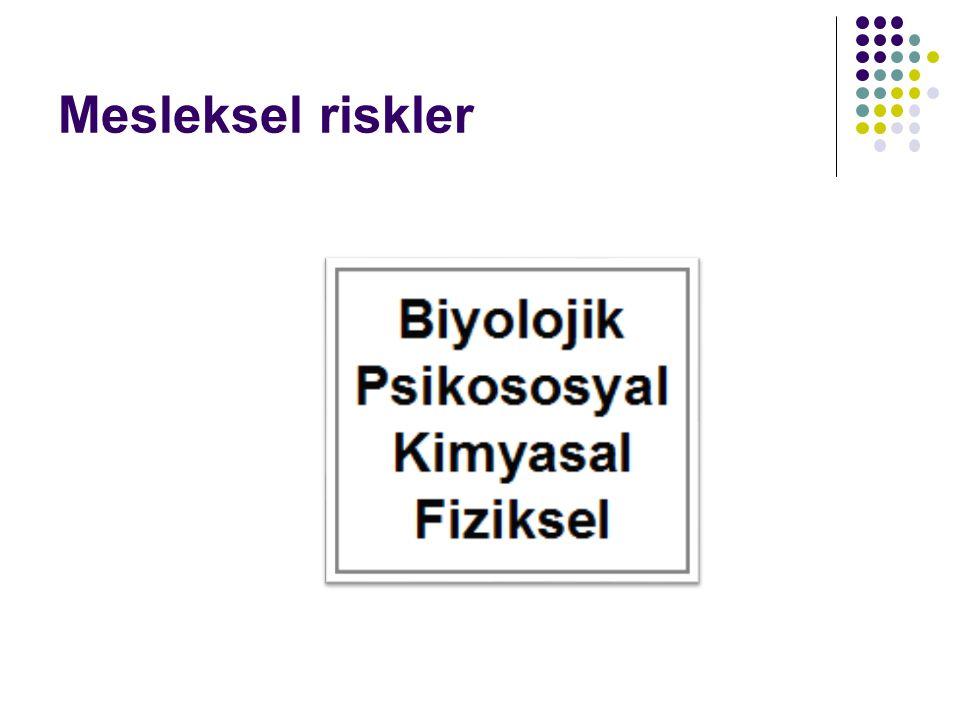 Sağlık ve Sosyal Hizmet Çalışan Sayısının Zamanla Değişimi Çalışan19992005Değişim Toplam163 809128 653% -21 Kamu162 832109 644% -32,6 Özel276119 009% 588 National Statistical Institute Bulgaria,