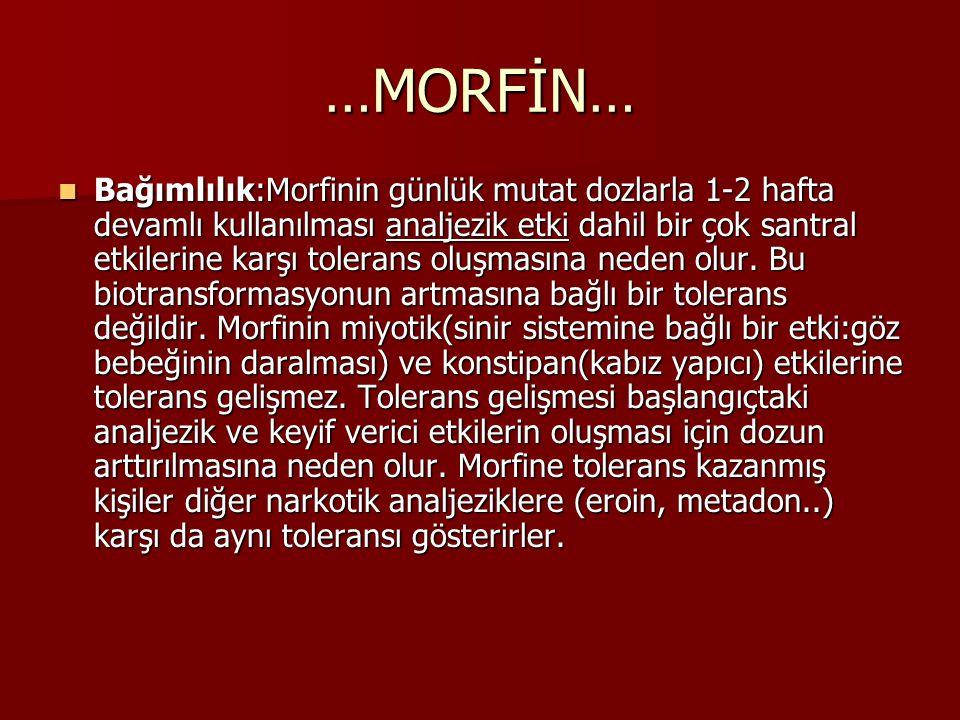 …MORFİN… Bağımlılık:Morfinin günlük mutat dozlarla 1-2 hafta devamlı kullanılması analjezik etki dahil bir çok santral etkilerine karşı tolerans oluşm
