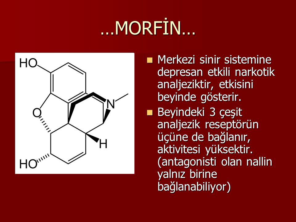 …MORFİN… Merkezi sinir sistemine depresan etkili narkotik analjeziktir, etkisini beyinde gösterir. Merkezi sinir sistemine depresan etkili narkotik an