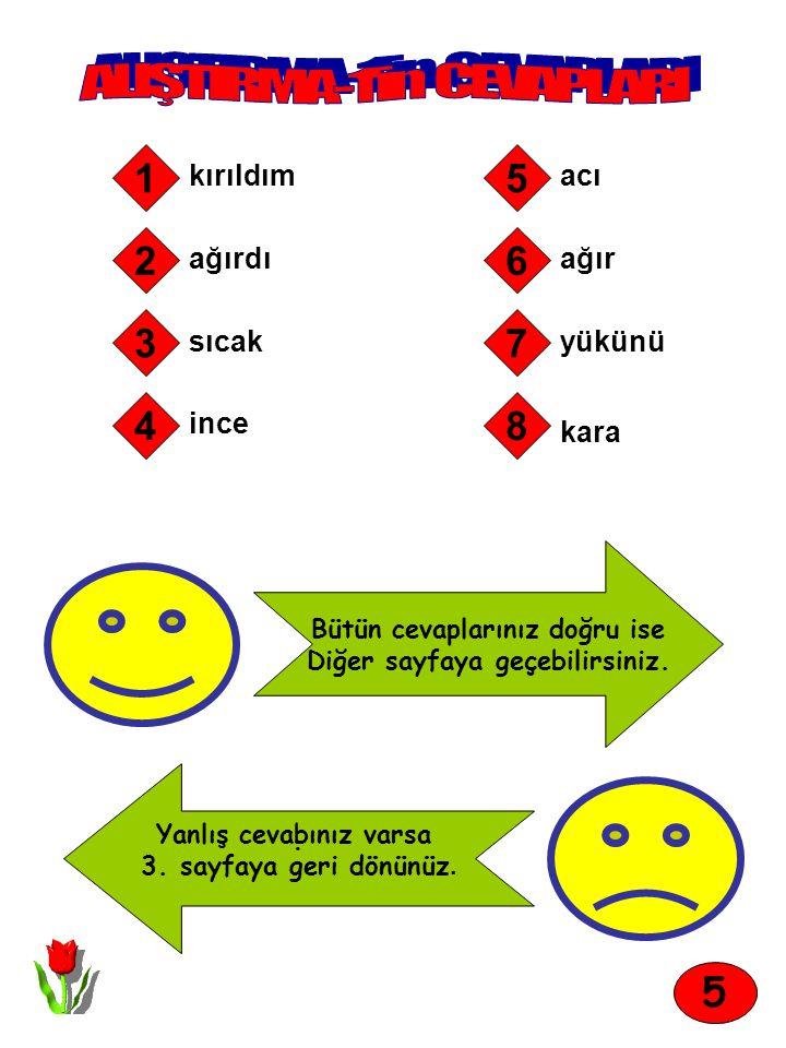 Aşağıdaki tümcelerde bulunan eş sesli sözcüklerin altlarını çiziniz.