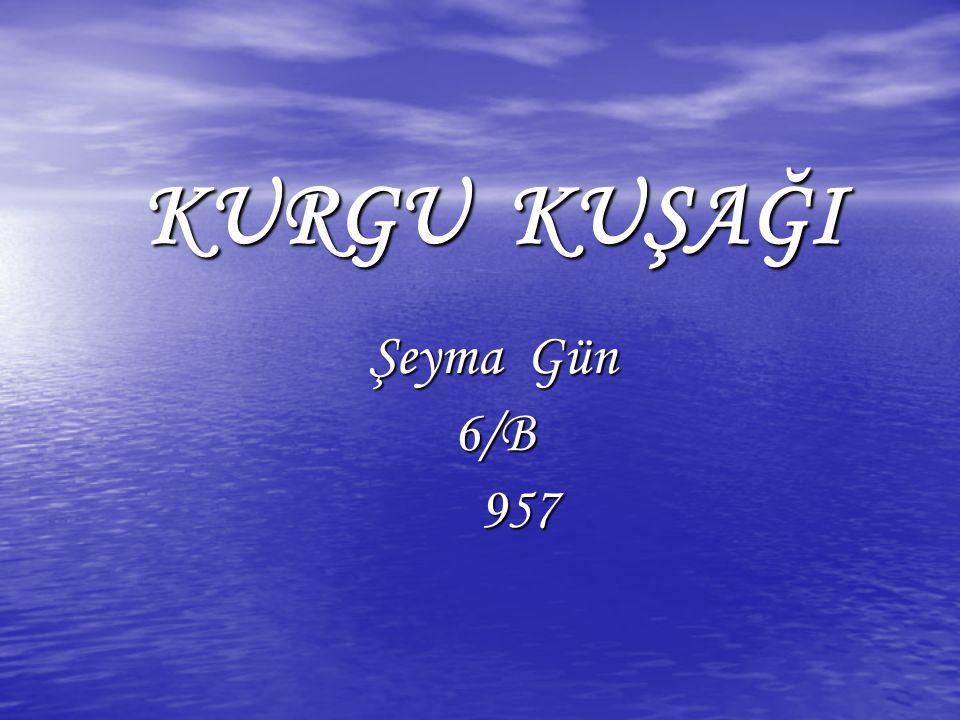 KURGU KUŞAĞI KURGU KUŞAĞI Şeyma Gün 6/B 957 957