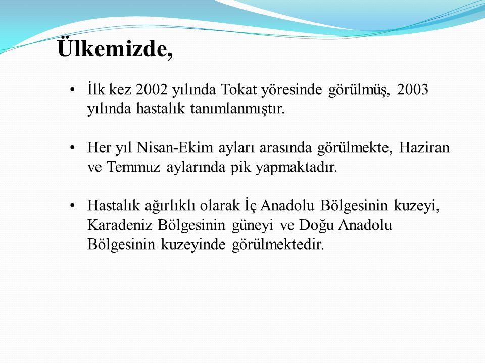 Ülkemizde, İlk kez 2002 yılında Tokat yöresinde görülmüş, 2003 yılında hastalık tanımlanmıştır. Her yıl Nisan-Ekim ayları arasında görülmekte, Haziran