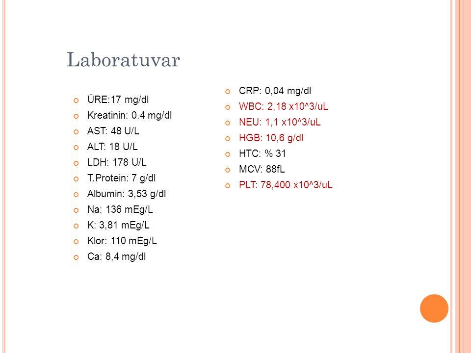 Laboratuvar ÜRE:17 mg/dl Kreatinin: 0.4 mg/dl AST: 48 U/L ALT: 18 U/L LDH: 178 U/L T.Protein: 7 g/dl Albumin: 3,53 g/dl Na: 136 mEg/L K: 3,81 mEg/L Kl