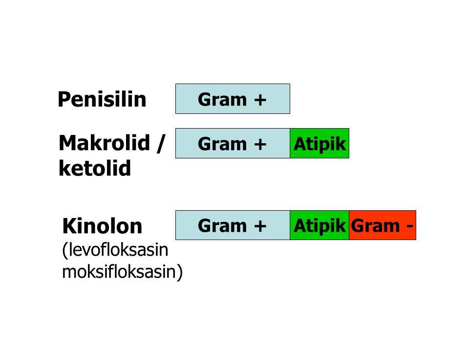 Gram + AtipikGram + AtipikGram - Penisilin Makrolid / ketolid Kinolon (levofloksasin moksifloksasin)