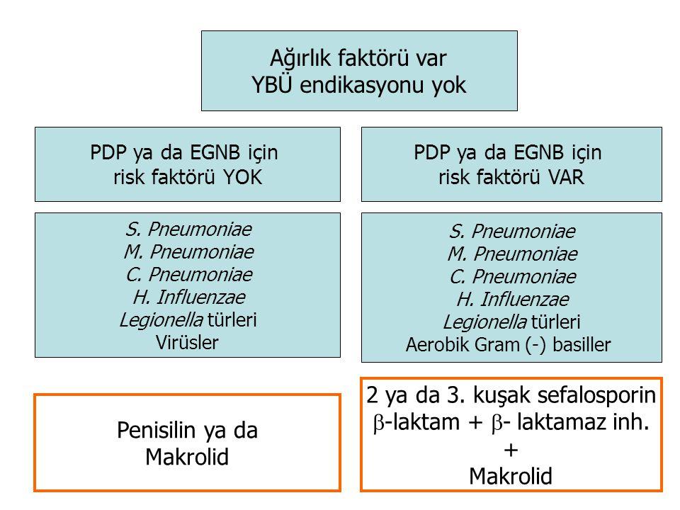 Ağırlık faktörü var YBÜ endikasyonu yok PDP ya da EGNB için risk faktörü YOK PDP ya da EGNB için risk faktörü VAR S.