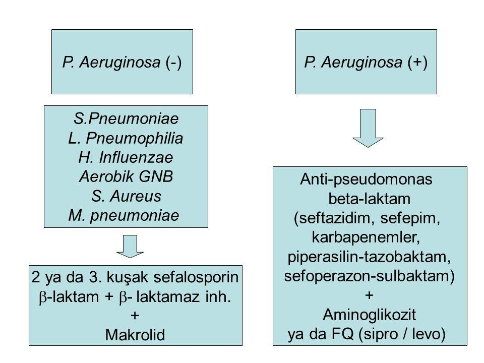 P.Aeruginosa (+)P. Aeruginosa (-) S.Pneumoniae L.