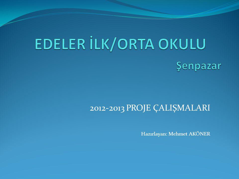 2012-2013 PROJE ÇALIŞMALARI Hazırlayan: Mehmet AKÖNER