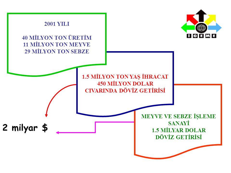 1.5 MİLYON TON YAŞ İHRACAT 450 MİLYON DOLAR CIVARINDA DÖVİZ GETİRİSİ 2001 YILI 40 MİLYON TON ÜRETİM 11 MİLYON TON MEYVE 29 MİLYON TON SEBZE MEYVE VE SEBZE İŞLEME SANAYİ 1.5 MİLYAR DOLAR DÖVİZ GETİRİSİ 2 milyar $