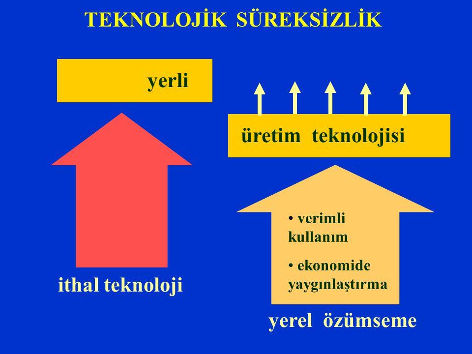 TEKNOLOJİK SÜREKSİZLİK ithal teknoloji yerel özümseme verimli kullanım ekonomide yaygınlaştırma üretim teknolojisi yerli
