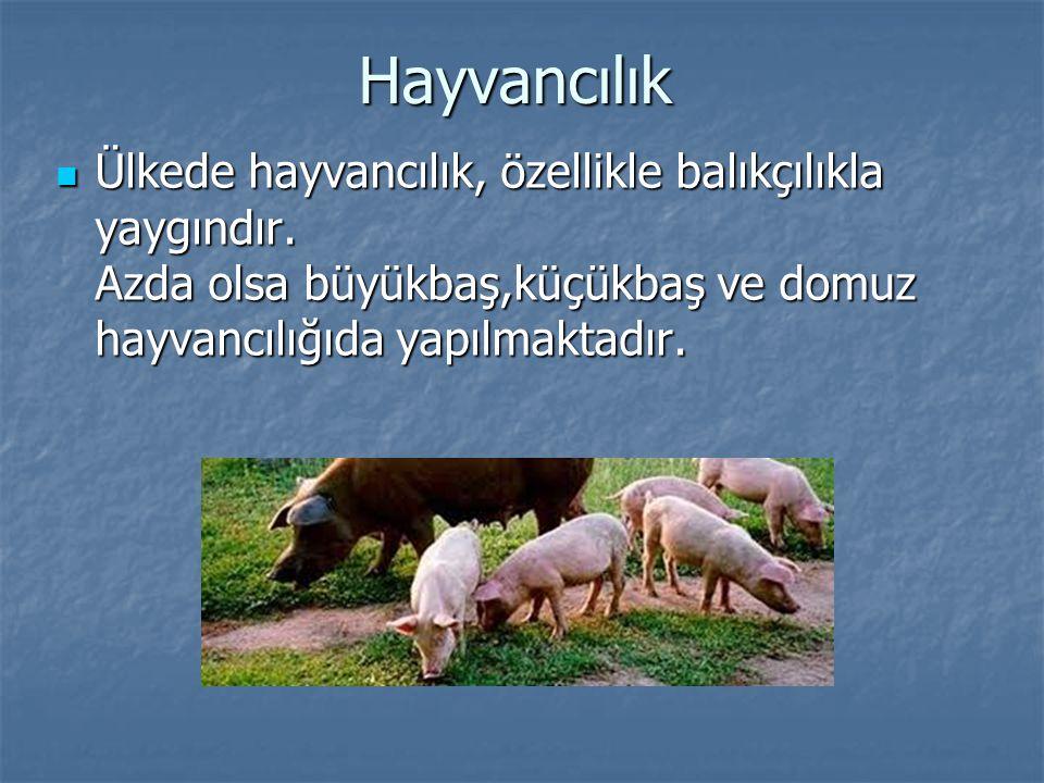 Hayvancılık Ülkede hayvancılık, özellikle balıkçılıkla yaygındır. Azda olsa büyükbaş,küçükbaş ve domuz hayvancılığıda yapılmaktadır. Ülkede hayvancılı