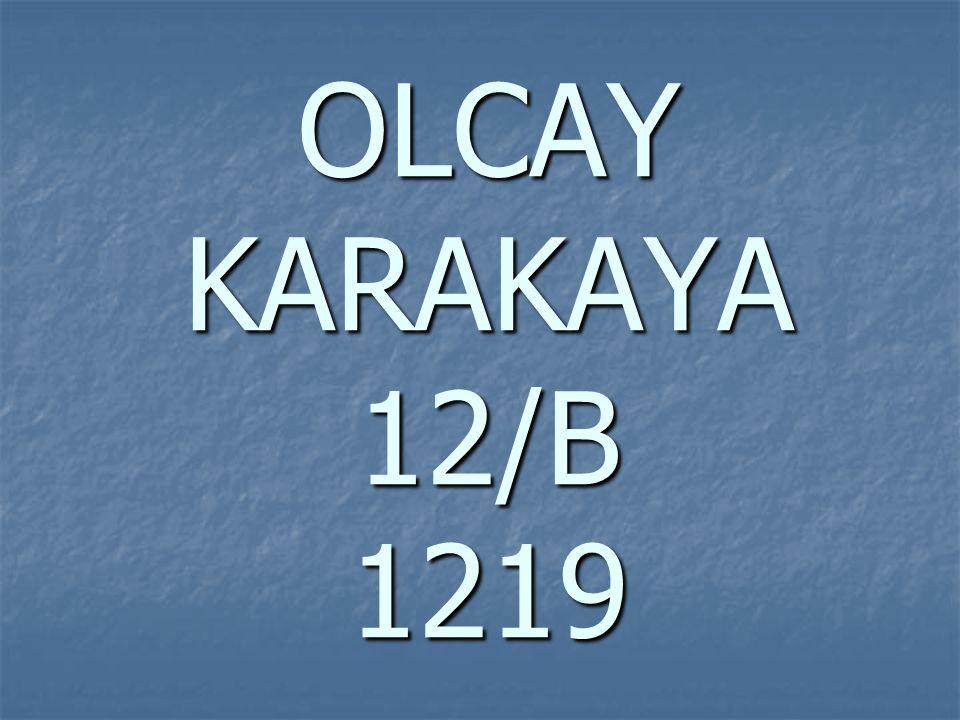 OLCAY KARAKAYA 12/B 1219