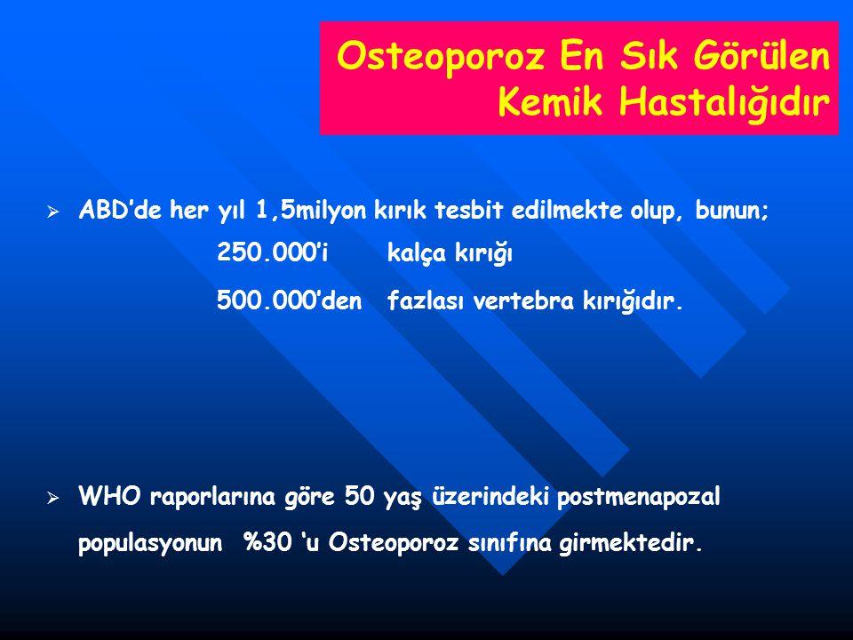 50 Yaş Üzeri Kadınlarda Vertebra Fraktür Prevalansı EVOS(European Vertebral Osteoporoz Study Group) 19 ülke ortalaması %6-20 Melton %26 Cummigs %32 olarak tesbit etmiştir.