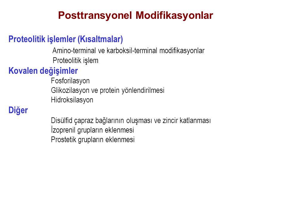 Posttransyonel Modifikasyonlar Proteolitik işlemler (Kısaltmalar) Amino-terminal ve karboksil-terminal modifikasyonlar Proteolitik işlem Kovalen değiş