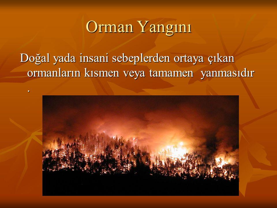 Orman Yangını Doğal yada insani sebeplerden ortaya çıkan ormanların kısmen veya tamamen yanmasıdır. Doğal yada insani sebeplerden ortaya çıkan ormanla