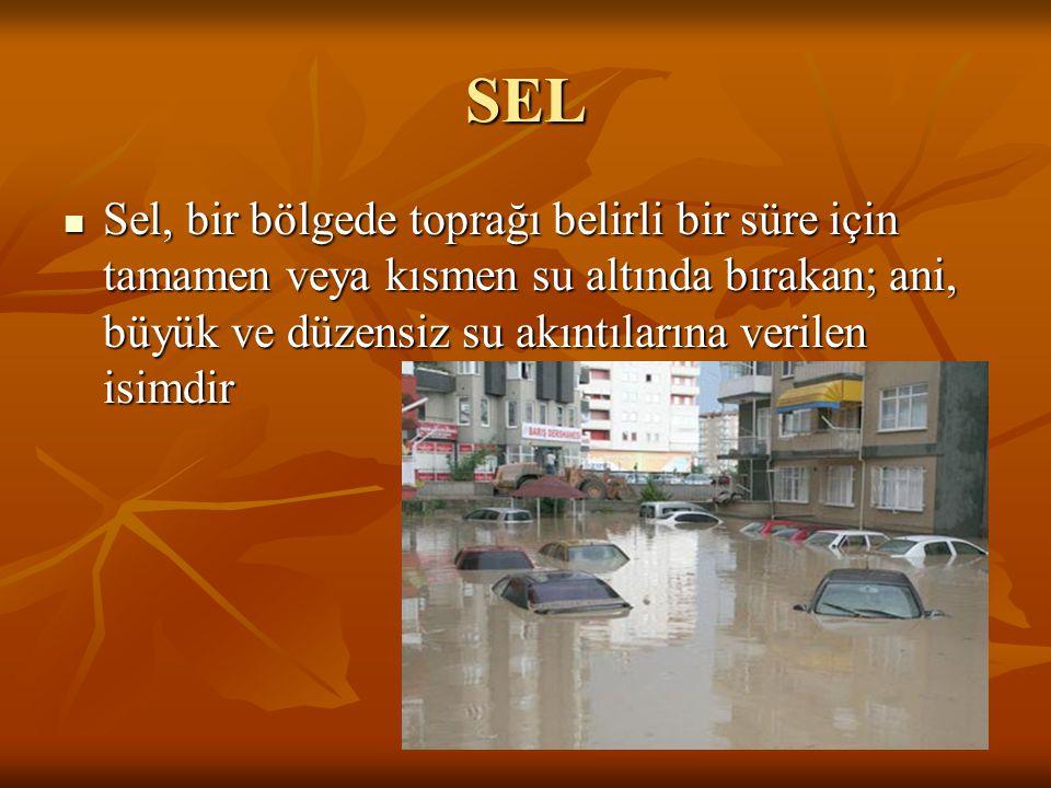 SEL Sel, bir bölgede toprağı belirli bir süre için tamamen veya kısmen su altında bırakan; ani, büyük ve düzensiz su akıntılarına verilen isimdir Sel,