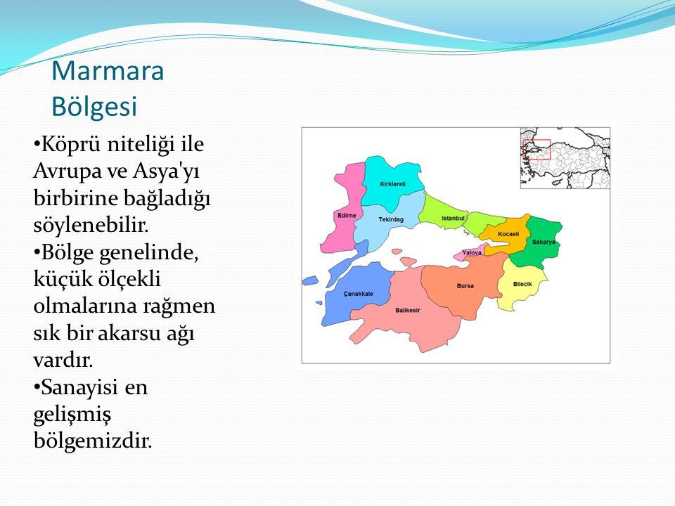 Marmara Bölgesi Köprü niteliği ile Avrupa ve Asya'yı birbirine bağladığı söylenebilir. Bölge genelinde, küçük ölçekli olmalarına rağmen sık bir akarsu