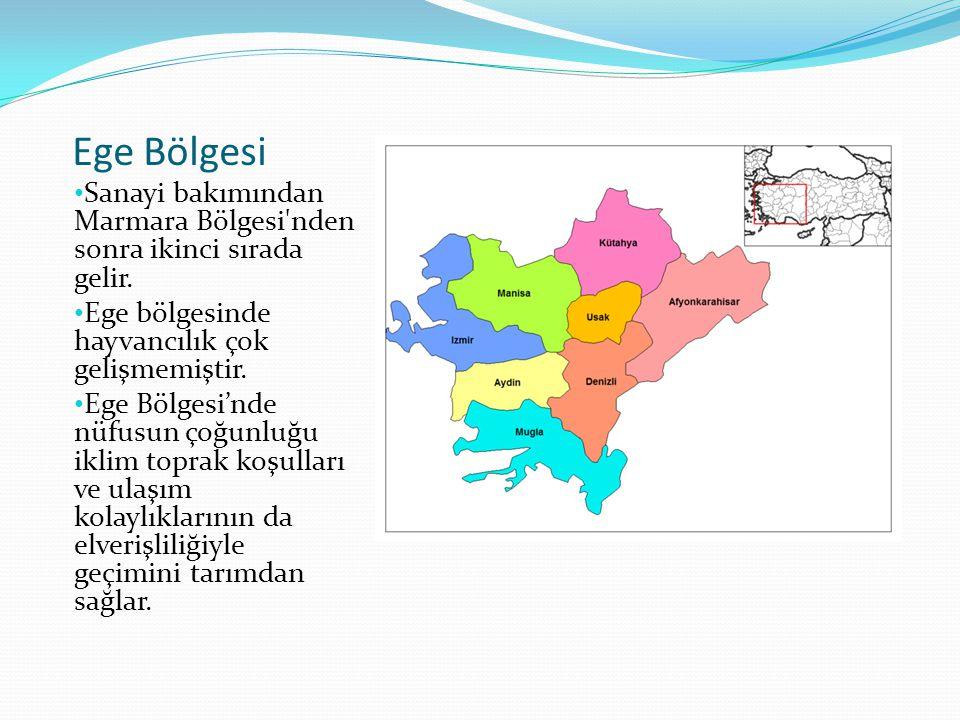 Ege Bölgesi Sanayi bakımından Marmara Bölgesi'nden sonra ikinci sırada gelir. Ege bölgesinde hayvancılık çok gelişmemiştir. Ege Bölgesi'nde nüfusun ço