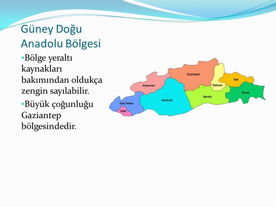 Güney Doğu Anadolu Bölgesi Bölge yeraltı kaynakları bakımından oldukça zengin sayılabilir. Büyük çoğunluğu Gaziantep bölgesindedir.