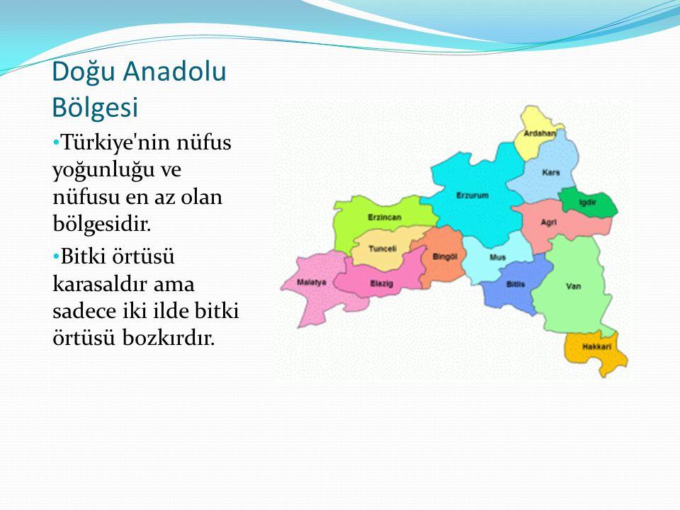 Doğu Anadolu Bölgesi Türkiye'nin nüfus yoğunluğu ve nüfusu en az olan bölgesidir. Bitki örtüsü karasaldır ama sadece iki ilde bitki örtüsü bozkırdır.