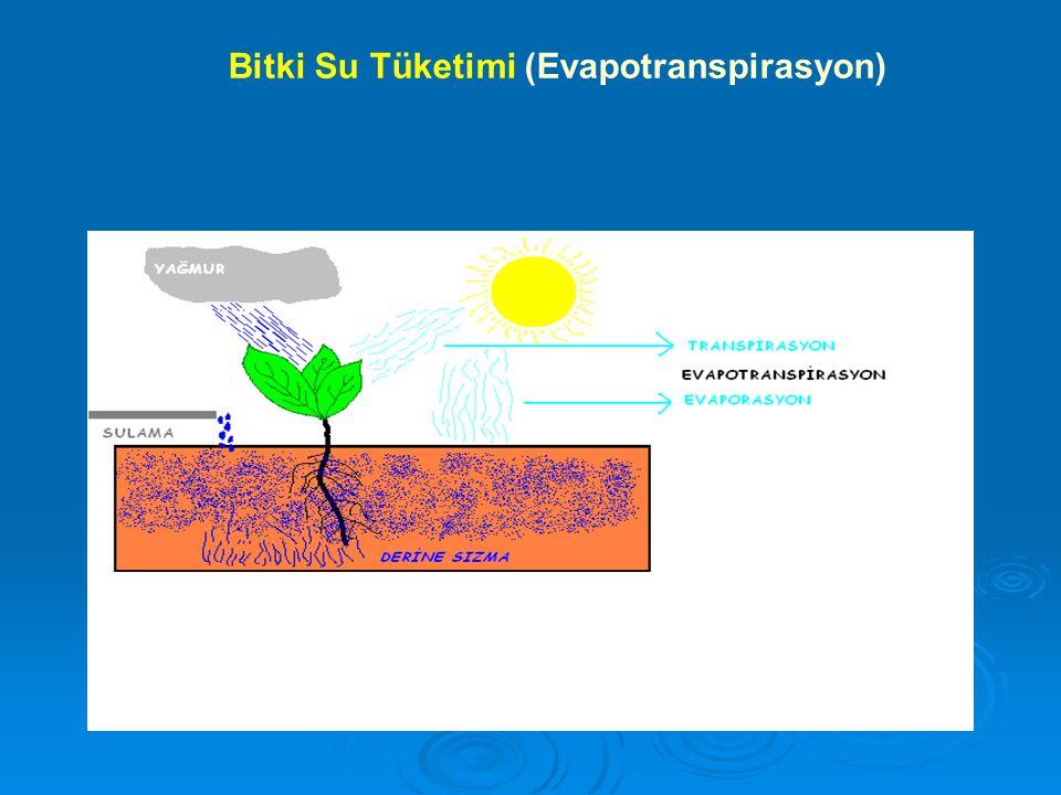 Bitki Su Tüketimi (Evapotranspirasyon)