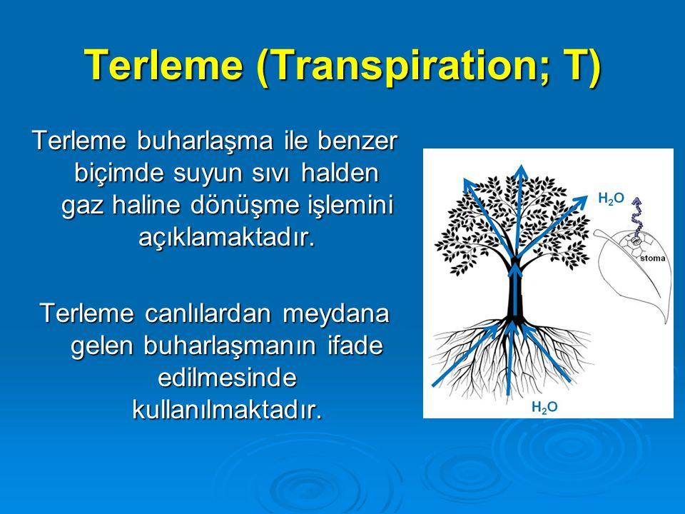 Terleme (Transpiration; T) Terleme buharlaşma ile benzer biçimde suyun sıvı halden gaz haline dönüşme işlemini açıklamaktadır. Terleme canlılardan mey